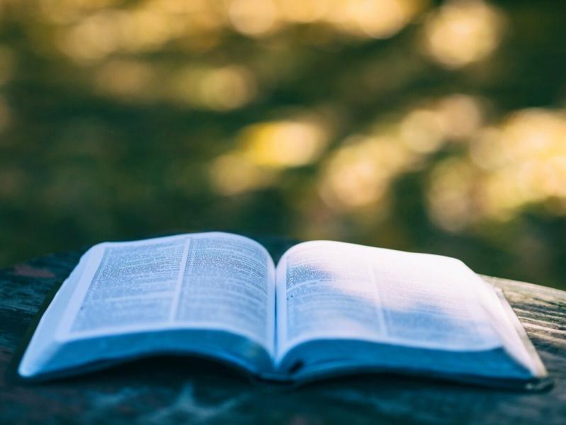 Выберите одну из Мудрых Книг: она расскажет, что вас сейчас тревожит и даст ценный совет