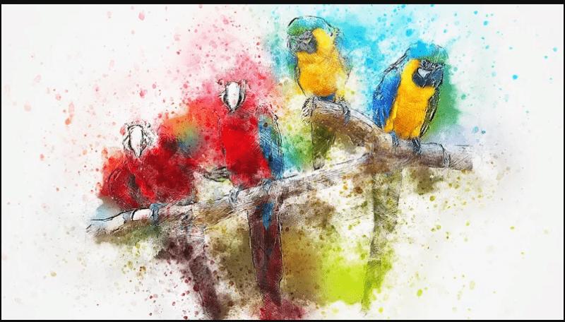 Выберите рисунок и узнайте, готовы ли вы на изменения и достижение амбициозных целей